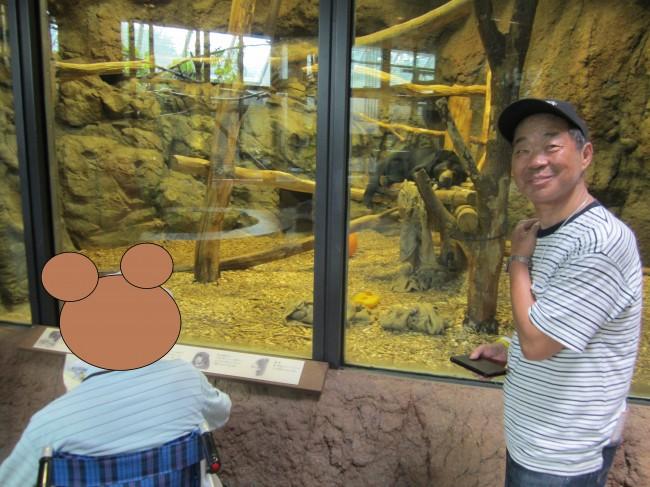 IMG_4774動物園